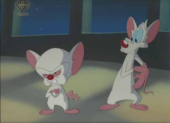 Pinky And The Brain Grumpy